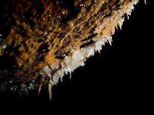 Escalón - Detalle cristalizaciones