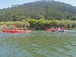 Navegando por las Marismas de Santoña